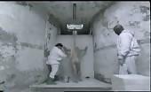 Nked fag stag Bruce Willis in 12 Monkeys Clip
