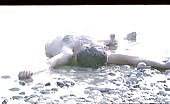 Cock jockey Lepomir Ivkovic naked romp in the sand